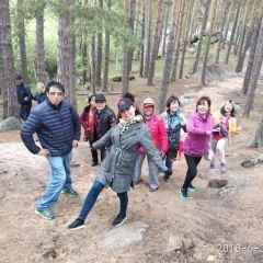 우룽 국립삼림공원 여행 사진