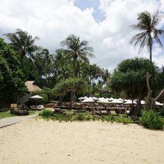 Mai Khao Beach User Photo