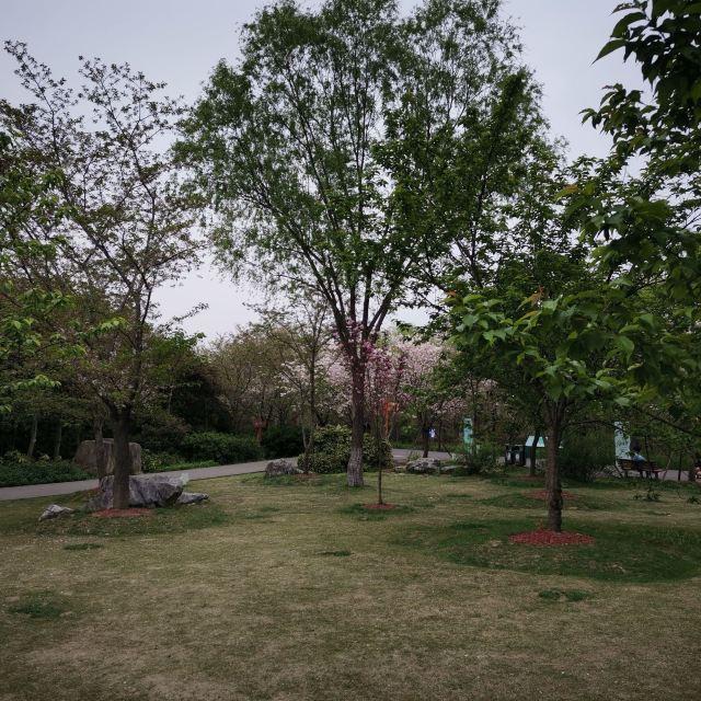 海棠煙雨公園
