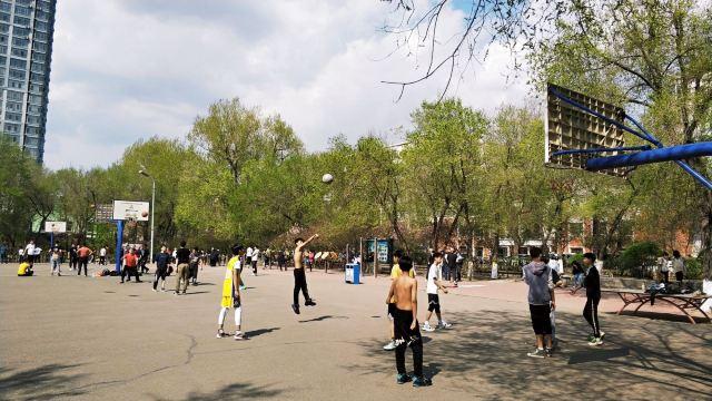 Ancient Pear Park