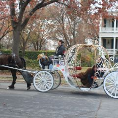 King William Historic District User Photo