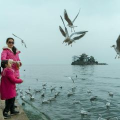 Little Putuo Island User Photo