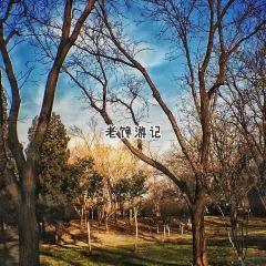 Tianjin Water Park User Photo