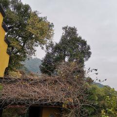 "Jiulong (""Nine Dragon"") Valley Scenic Area User Photo"