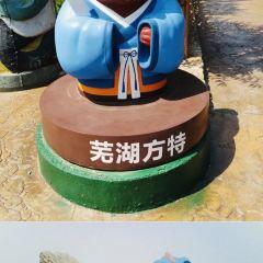 蕪湖方特歡樂世界用戶圖片