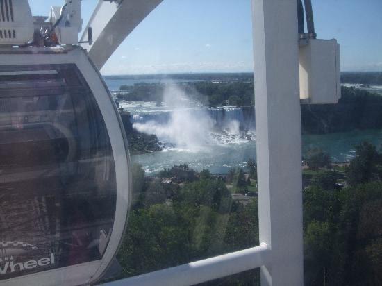 Niagara Skywheel