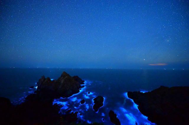 【追淚趁現在】馬祖藍眼淚強勢來襲,罕見藍光一生一定要體驗一次!
