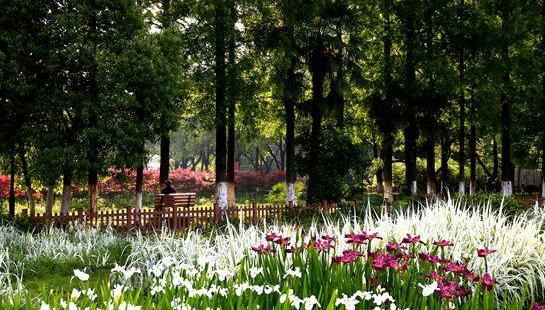 武漢市園林科普公園