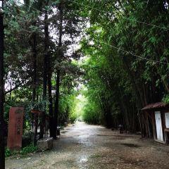 Haishe Ecological Park User Photo