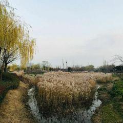 Beilonghushidi Park User Photo