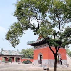 Yuan Lin User Photo
