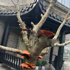 Former Residence of Jia Yi User Photo