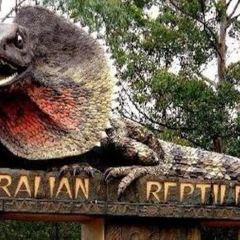 Australian Reptile Park User Photo