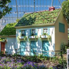 菲普斯溫室植物園用戶圖片
