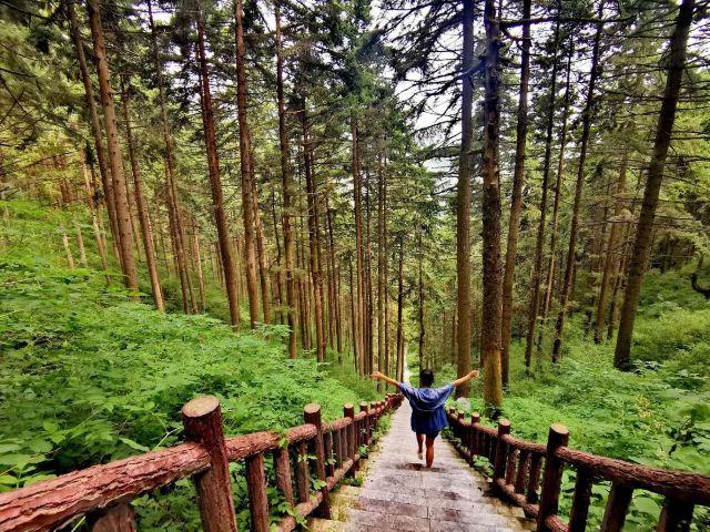 싱룽산 자연보호구