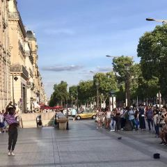 Citroen Champs-Elysees Showroom用戶圖片