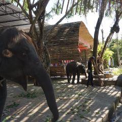 布吉動物園用戶圖片