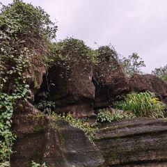 홍석림국가지질공원 여행 사진