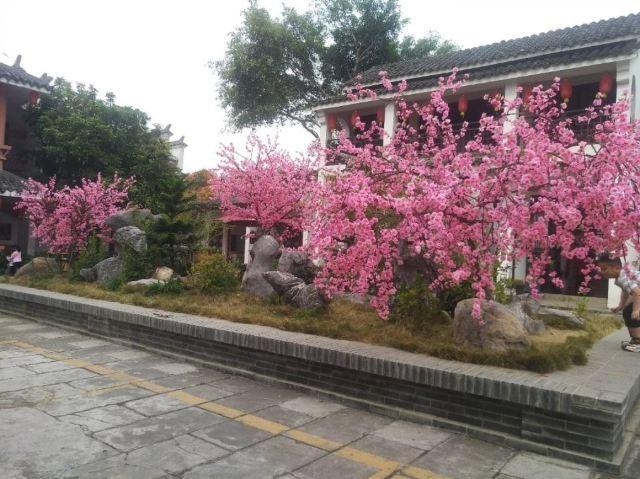 Nanguo Peach Garden