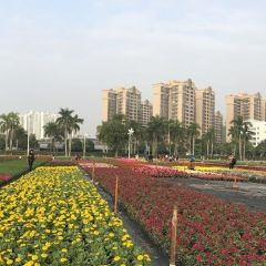 Nanningshi Huahui Park User Photo