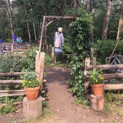 埃德蒙頓古堡公園用戶圖片