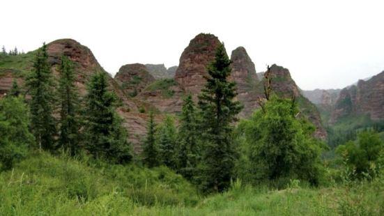 Qinghai Kanbra National Forest