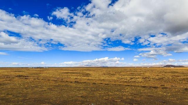 Qiangtang Prairie
