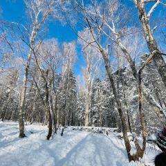 설향국가삼림공원 여행 사진