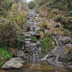 Mt. Yunji Nature Reserve User Photo