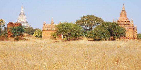 1774 Pagoda