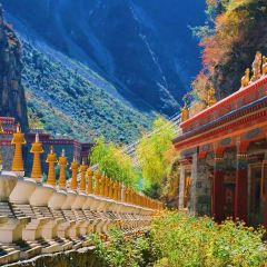 黑龍江省克東縣楞嚴寺用戶圖片