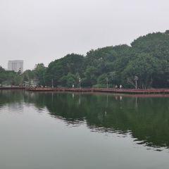 시후 공원 여행 사진
