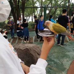 東湖海洋樂園飛鳥世界用戶圖片