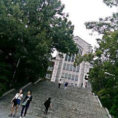 梨花女子大學用戶圖片