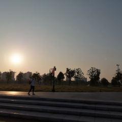 婺州公園用戶圖片