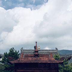 三塔寺用戶圖片