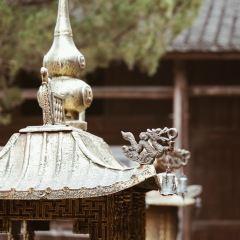 大濟村用戶圖片