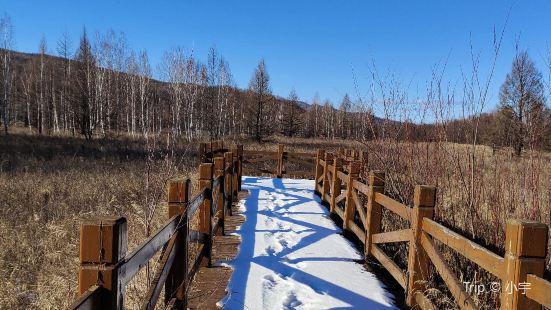 嘎仙洞森林公園
