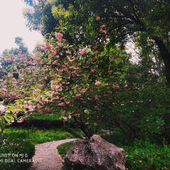 Baotashan Park User Photo