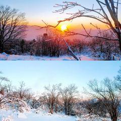 老白山原始生態景區用戶圖片