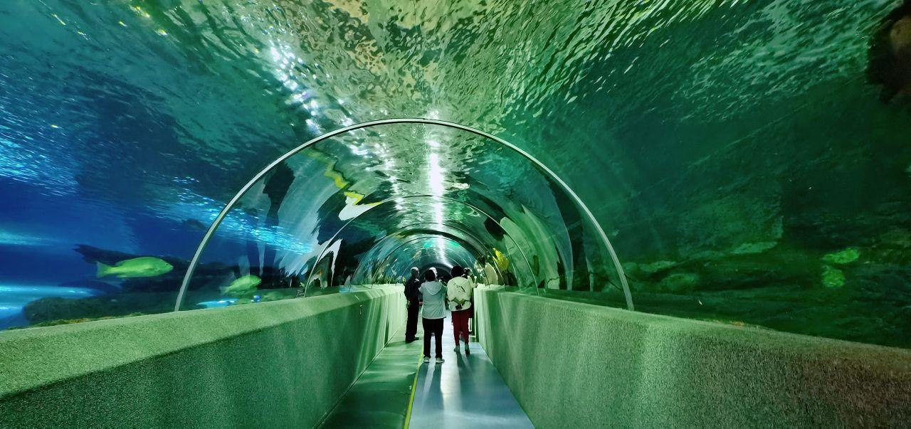 新澳海底世界