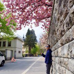 무제크성벽 여행 사진