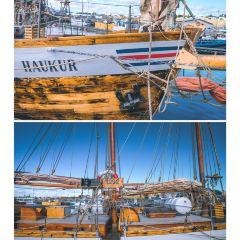 The Husavik Whale Museum User Photo