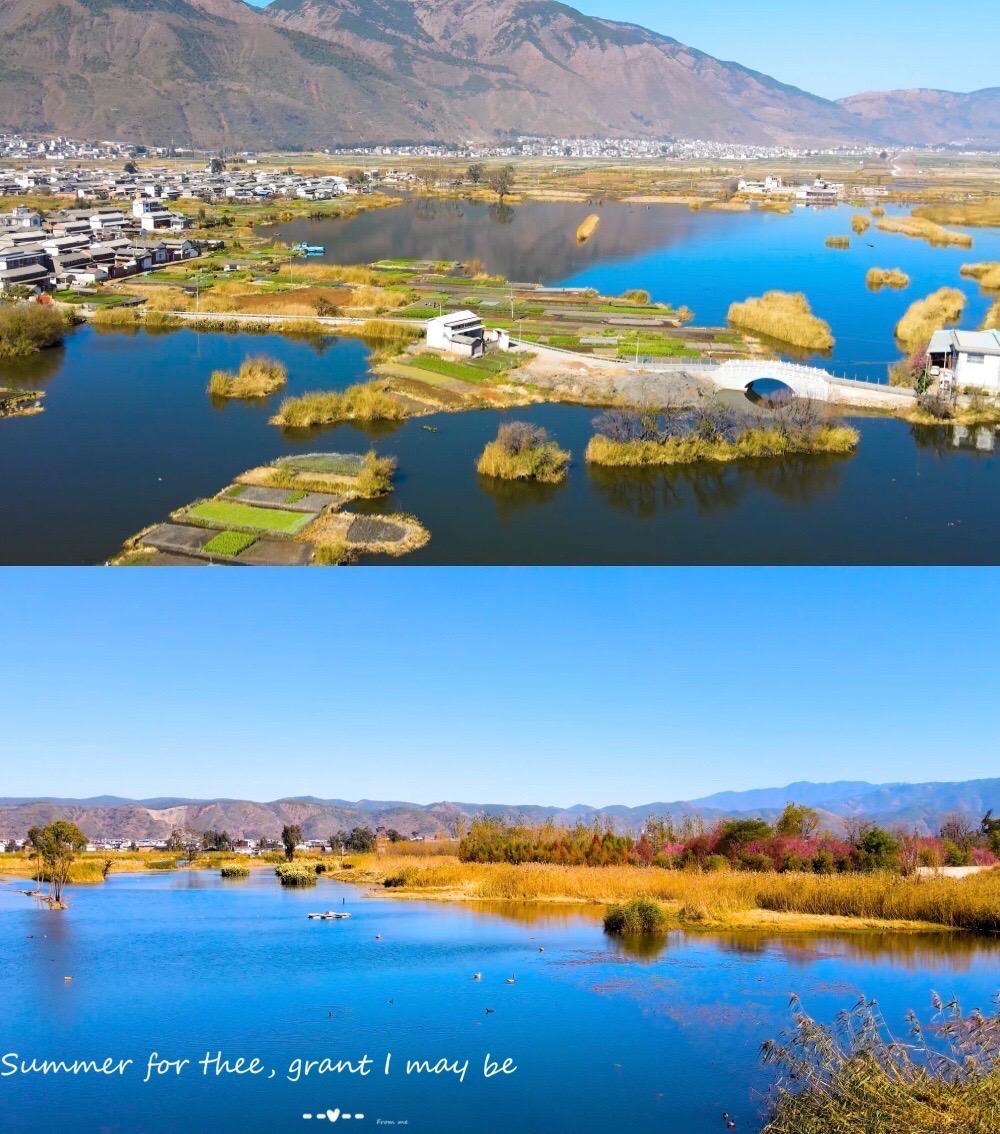 Dalishi Luoshijiang Ecology Wetland