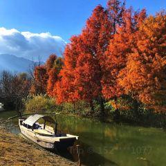 Majiuyi User Photo