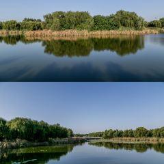 Hehe Wetland Park User Photo