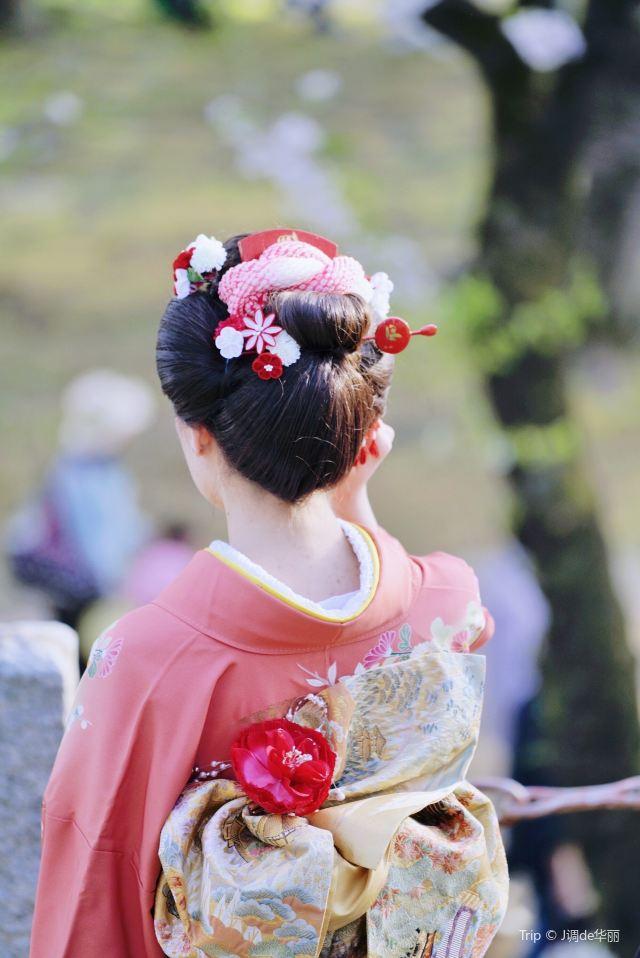 Ishiwarizakura