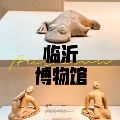 Linyi Museum (South Gate) User Photo