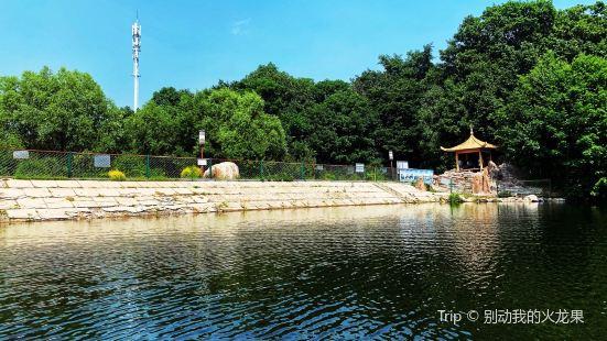 吉林舒蘭市森林公園