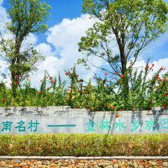 Jinlin Shuixiang User Photo